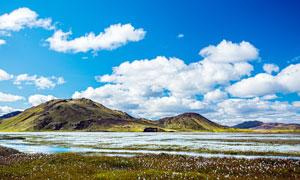 山脚下的的花海美景摄影图片