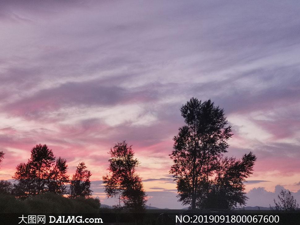 黄昏下的田园树木剪影高清摄影图片
