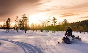树林中的雪地车和雪景摄影图片