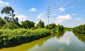 茶山镇生态园湿地公园摄影图片