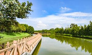 广州茶山生态园美景摄影图片