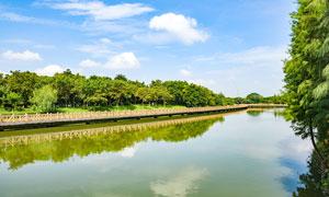 茶山生态公园河道风光摄影图片