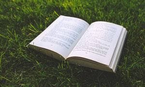 草地上的英文书籍高清摄影图片