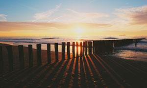夕阳下的海滩和木桩摄影图片