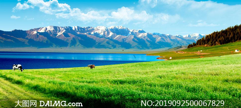 雪山下的湖泊和草地PSD分层素材