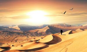 夕阳下在沙漠中行走的游客摄影图片