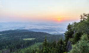 夕阳下的山顶森林美景摄影图片