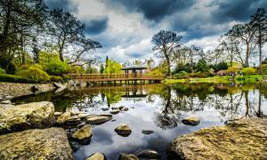 公园中池塘边的亭子和岩石摄影图片