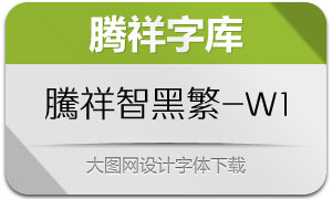 腾祥智黑繁-W1