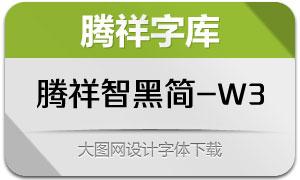腾祥智黑简-W3