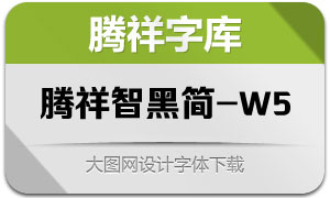 腾祥智黑简-W5