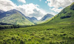 蓝天白云下的山底绿色草地摄影图片