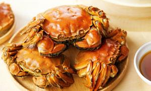 大闸蟹美食菜品高清摄影图片