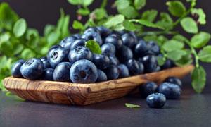 新鲜的蓝莓特写高清摄影图片