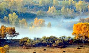 秋季云雾缭绕的山林美景摄影图片