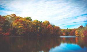 秋季湖泊和树木美景高清摄影图片