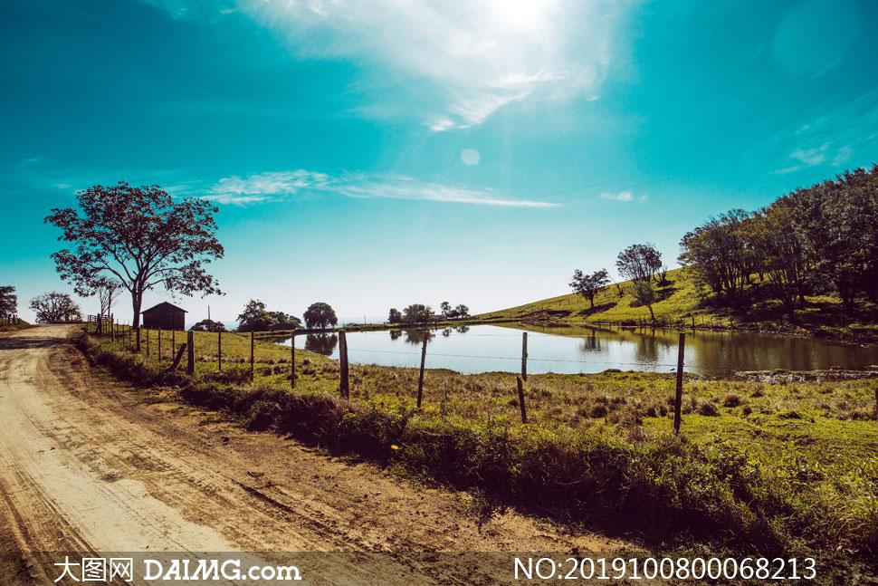 乡村田园道路和池塘高清摄影图片