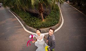 俯视角度幸福爱人婚纱高清原片素材