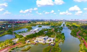 蓝天白云下的滨州湿地公园摄影图片