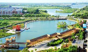 滨州秦皇河湿地公园高清摄影图片