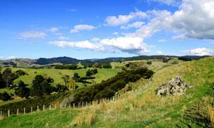 新西兰野外自然风光高清摄影图片