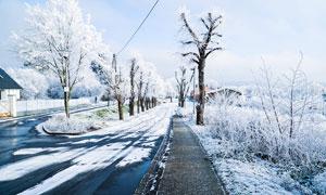 冬季公路雪后美景摄影图片