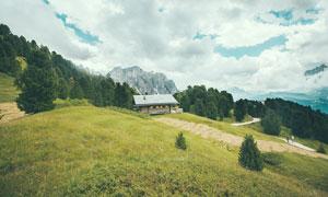 山坡上的草地和房屋摄影图片