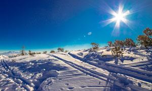 冬季阳光下山坡雪景摄影图片