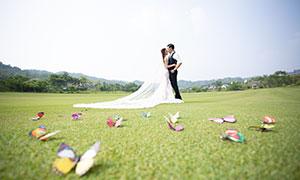 远山草地风光外景婚纱摄影原片素材
