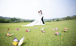 树木远山外景风光婚纱高清摄影原片