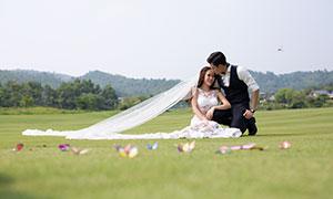 远山树木外景风光恋人婚纱摄影原片