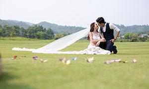 草场上的甜蜜幸福恋人婚纱摄影原片