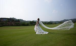 草坪外景头纱飘起来的美女摄影原片