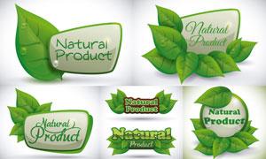 有机食物健康食品标签矢量素材集V02