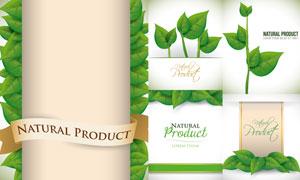 有机食物健康食品标签矢量素材集V04