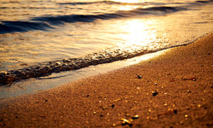 夕阳下的金色沙滩美景摄影图片