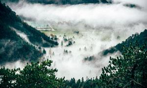 雾气缭绕的青山美景摄影图片