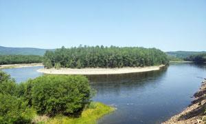 蓝天下河边的树林美景摄影图片