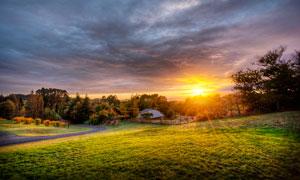 夕陽下的綠色草地高清攝影圖片