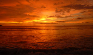 金黄色的海边美景摄影图片