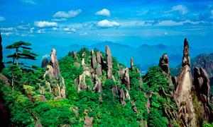 江西三清山石林美景高清攝影圖片