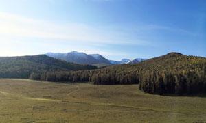 蓝天下的山峰和森林摄影图片