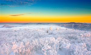 陜西寶雞太白山雪后美景攝影圖片