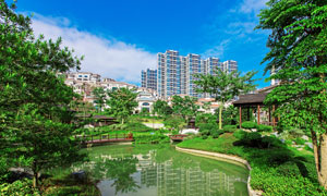 城市社區景觀綠化高清攝影圖片