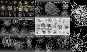 形态不一的蜘蛛网元素创意矢量素材