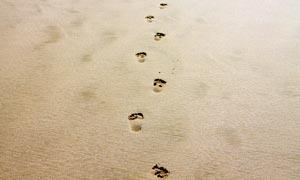 沙滩上的脚丫高清摄影图片