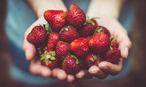 手捧着鲜红的草莓高清摄影图片