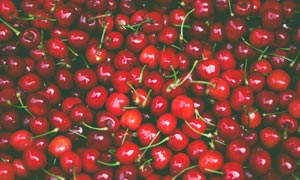 新鲜可口的樱桃水果高清摄影图片