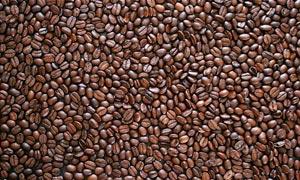 平铺的咖啡豆高清摄影图片