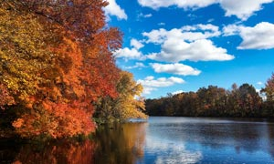 秋季藍天白云下湖泊美景攝影圖片